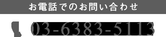 03-6383-5113