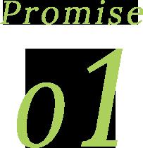 Promise 01